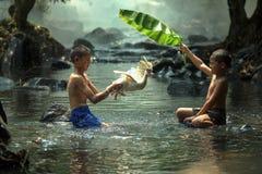 El jugar en The Creek Imagen de archivo libre de regalías