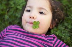 El jugar en el prado de la hierba con los tréboles Fotografía de archivo