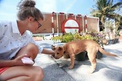 El jugar rubio hermoso con el perro fotografía de archivo