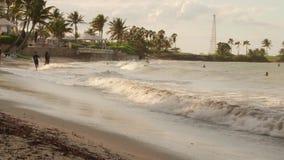 El jugar y el nadar en línea de la playa tropical del complejo playero metrajes