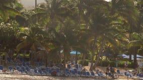 El jugar y el nadar en línea de la playa tropical del complejo playero almacen de video