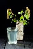 El jugo fresco del abedul en un vidrio y un abedul ramifica Imagen de archivo libre de regalías