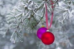 El juguete del Año Nuevo en rama en bosque natural del invierno Foto de archivo libre de regalías