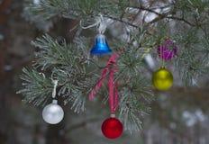 El juguete del Año Nuevo en rama en bosque natural del invierno Imágenes de archivo libres de regalías