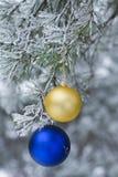 El juguete del Año Nuevo en rama en bosque natural del invierno Fotografía de archivo