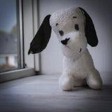 El juguete viejo del perro de la felpa del subordinado espera al dueño Imágenes de archivo libres de regalías