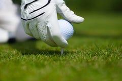 El juntar con te encima de una pelota de golf Imágenes de archivo libres de regalías