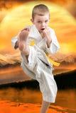 El karate del niño pequeño muestra las técnicas del arte marcial japonés del karate en la puesta del sol en las montañas Entrenam Foto de archivo