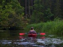 El Kayaking en el río a través del bosque Fotos de archivo