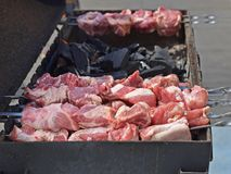 El kebab apetitoso en el metal ensarta comida campestre al aire libre Foto de archivo libre de regalías