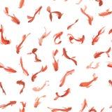 El koi de oro de la acuarela pesca el modelo inconsútil Puede ser utilizado para el papel pintado, fondo del sitio web, impresión Imagen de archivo libre de regalías