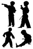 El kwon de Tae hace siluetas Imagen de archivo