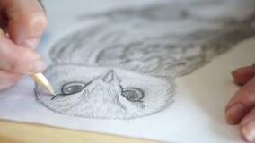 El lápiz dibuja la ceja en el búho