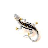 El lagarto de la broche. Imágenes de archivo libres de regalías