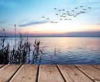 El lago Zdjęcie Stock