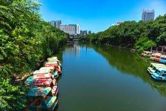 El lago artificial está en el parque imágenes de archivo libres de regalías