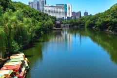 El lago artificial está en el parque imagen de archivo