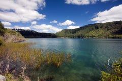 El lago azul, isla del norte, NZ fotografía de archivo libre de regalías