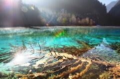 El lago claro Jiuzhaigou Foto de archivo libre de regalías