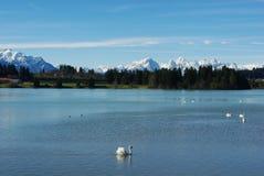 El lago con la opinión sobre las montan@as austríacas y alemanas acerca al Le Fotos de archivo