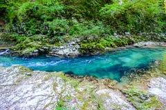El lago de la cascada en Soteska vintgar, Eslovenia el Vintgar va Fotos de archivo libres de regalías