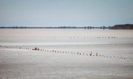 El lago de sal secado Imágenes de archivo libres de regalías