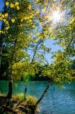El lago de Siberia del verde del otoño de la montaña con la reflexión, el abedul y Sun irradia del sol brillante que brilla entre Fotografía de archivo libre de regalías
