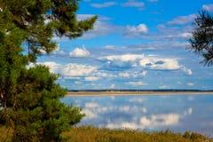 El lago del oso en oblast del kurganskaya. Rusia Fotografía de archivo