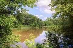El lago es rodeado por los árboles y las nubes verdes en el cielo en un día soleado Imagen de archivo