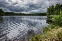 El lago es rodeado por un bosque grueso a lo largo del perímetro foto de archivo libre de regalías