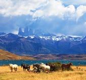 El lago fantástico en montañas Fotografía de archivo libre de regalías