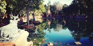 El lago hermoso en lámpara colgó Tailandia foto de archivo