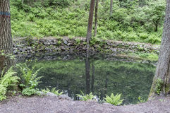 El lago limpio, reservado del bosque, la orilla se alinea con los cantos rodados en th Fotografía de archivo libre de regalías