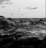 El lago Michigan en blanco y negro Fotos de archivo libres de regalías