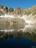 El lago negro Fotografía de archivo