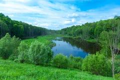 El lago summer y los árboles secos acercan a Chernóbil Fotos de archivo