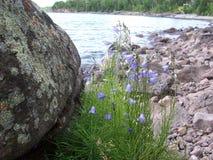 El lago Superior, Minnesota Foto de archivo libre de regalías