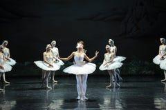 El lago swan del persistente-ballet del príncipe y del cisne Fotos de archivo