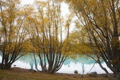 El lago Tekapo Foto de archivo