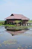 El lago y las aves acuáticas Thale Noi parquean en la provincia de Phatthalung Tailandia Foto de archivo