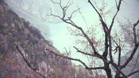 El lago y los árboles hermosos ajardinan el tiro de las alturas, enfoque hacia fuera metrajes