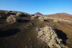 El Lajial - El Hierro, Канарские острова Испания Стоковые Фотографии RF