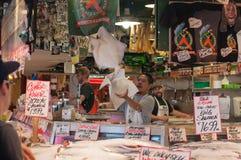 El lanzar de pescados Foto de archivo libre de regalías