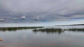 El lapso de tiempo, costa del golfo de Finlandia bajo rápidamente mudanza se nubla almacen de metraje de vídeo