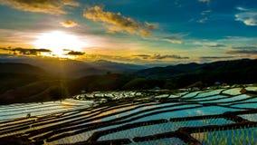 El lapso de tiempo, puesta del sol sobre los campos del arroz reflejó en el agua almacen de metraje de vídeo