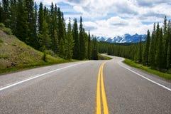 El largo camino Imagen de archivo