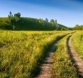 El largo camino en prados Imagen de archivo libre de regalías