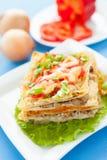 El lasagna hecho en casa recientemente cocido con las verduras y el queso sirvió en un pedazo de lechuga Foto de archivo
