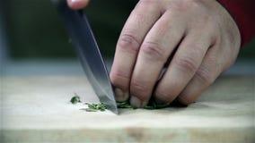 El laurel se corta en un escritorio de madera almacen de video
