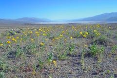 El lavabo de Death Valley Badwater pasa por alto Imagen de archivo libre de regalías